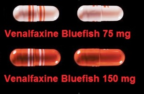 Venlafaxine bluefish